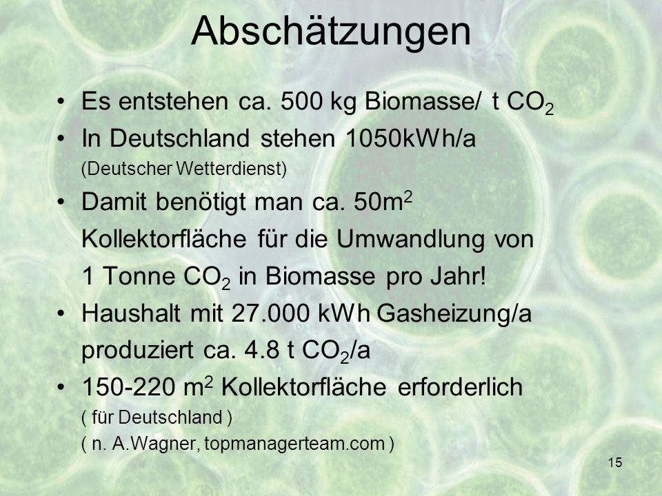 Abschätzungen Es entstehen ca. 500 kg Biomasse/ t CO2