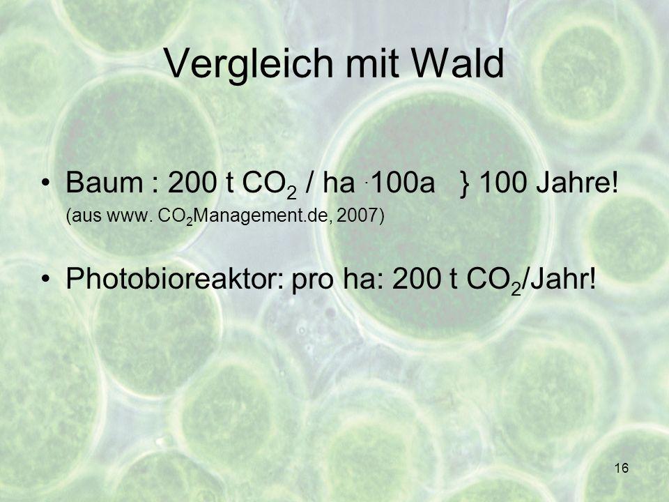 Vergleich mit Wald Baum : 200 t CO2 / ha .100a } 100 Jahre!