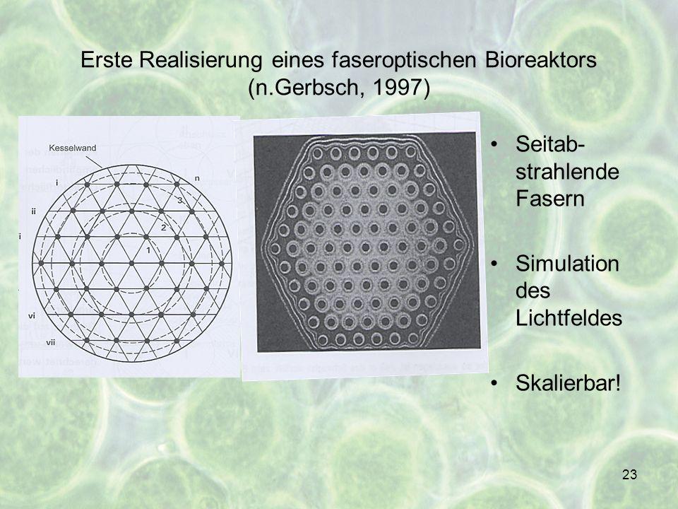 Erste Realisierung eines faseroptischen Bioreaktors (n.Gerbsch, 1997)