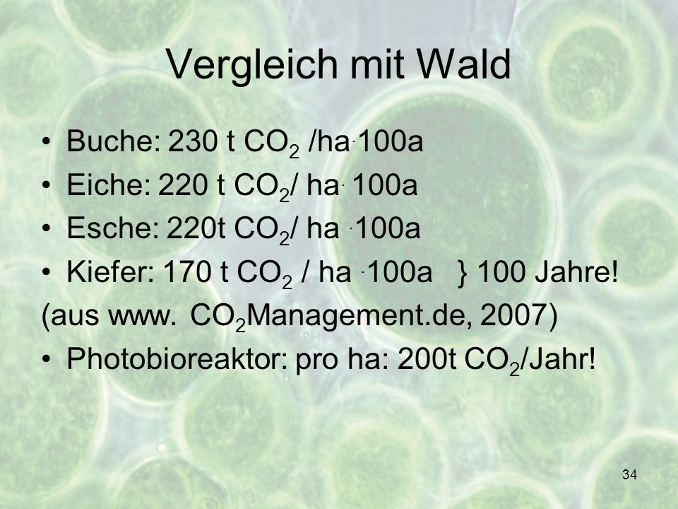 Vergleich mit Wald Buche: 230 t CO2 /ha.100a