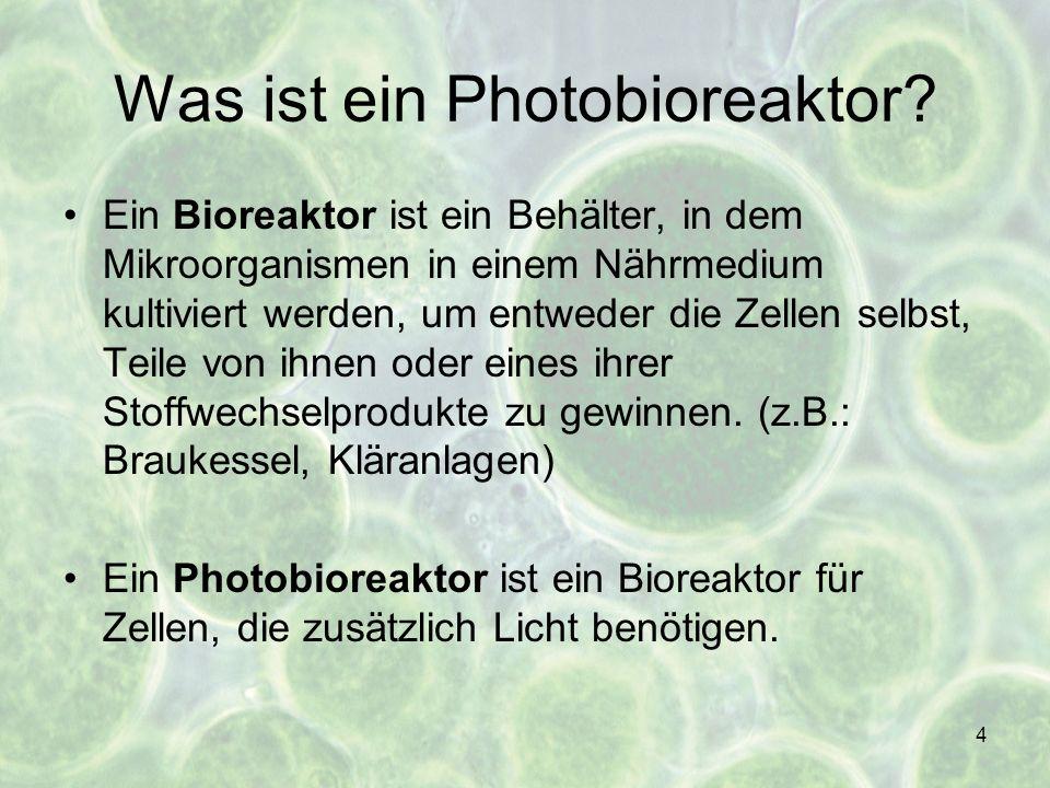Was ist ein Photobioreaktor