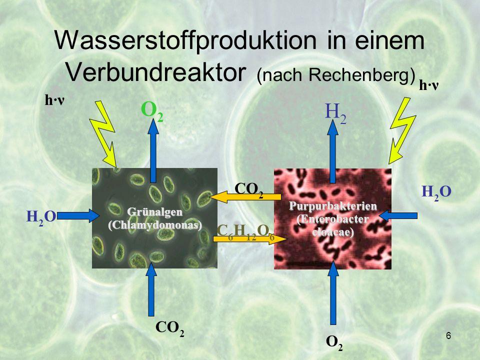 Wasserstoffproduktion in einem Verbundreaktor (nach Rechenberg)