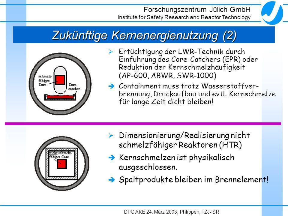 Zukünftige Kernenergienutzung (2)