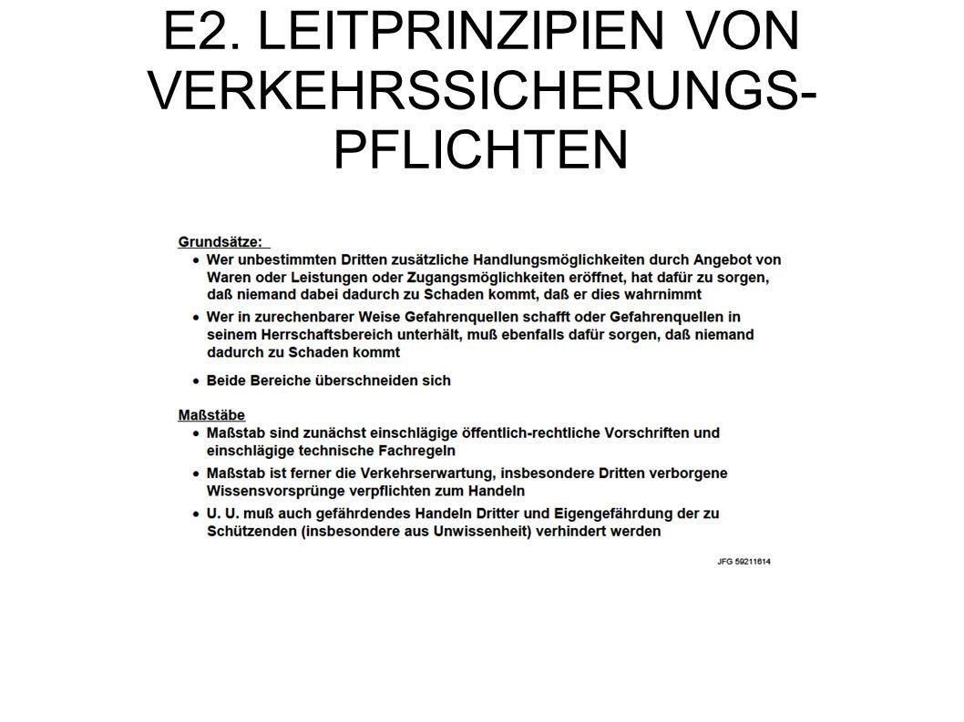 E2. LEITPRINZIPIEN VON VERKEHRSSICHERUNGS-PFLICHTEN