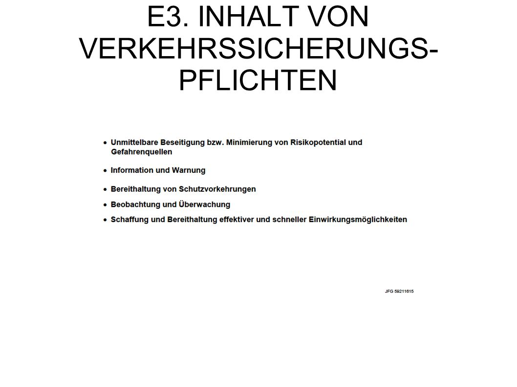 E3. INHALT VON VERKEHRSSICHERUNGS-PFLICHTEN