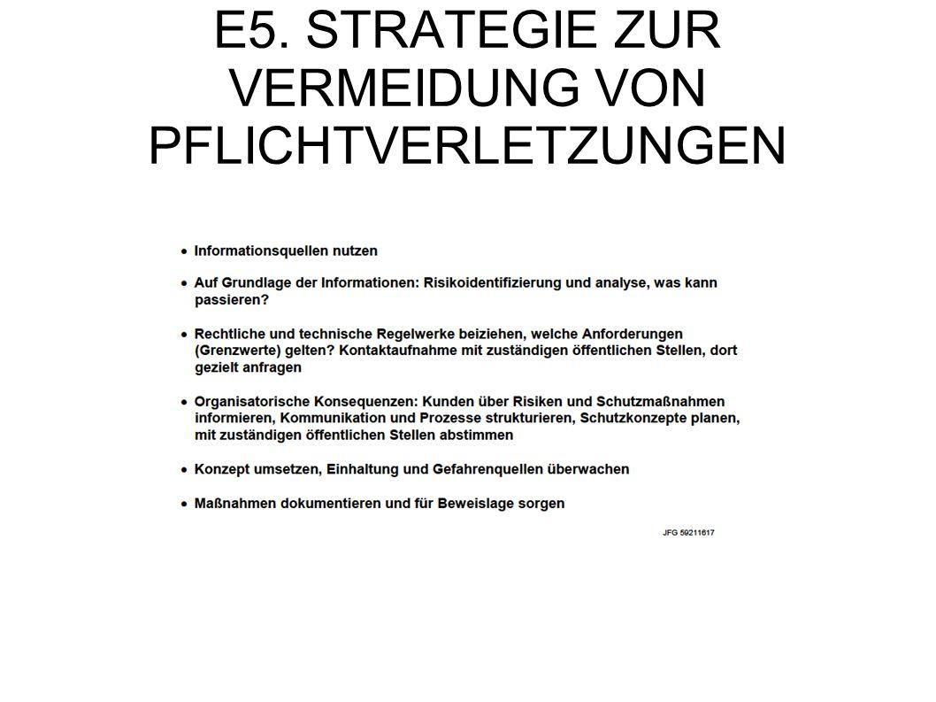 E5. STRATEGIE ZUR VERMEIDUNG VON PFLICHTVERLETZUNGEN