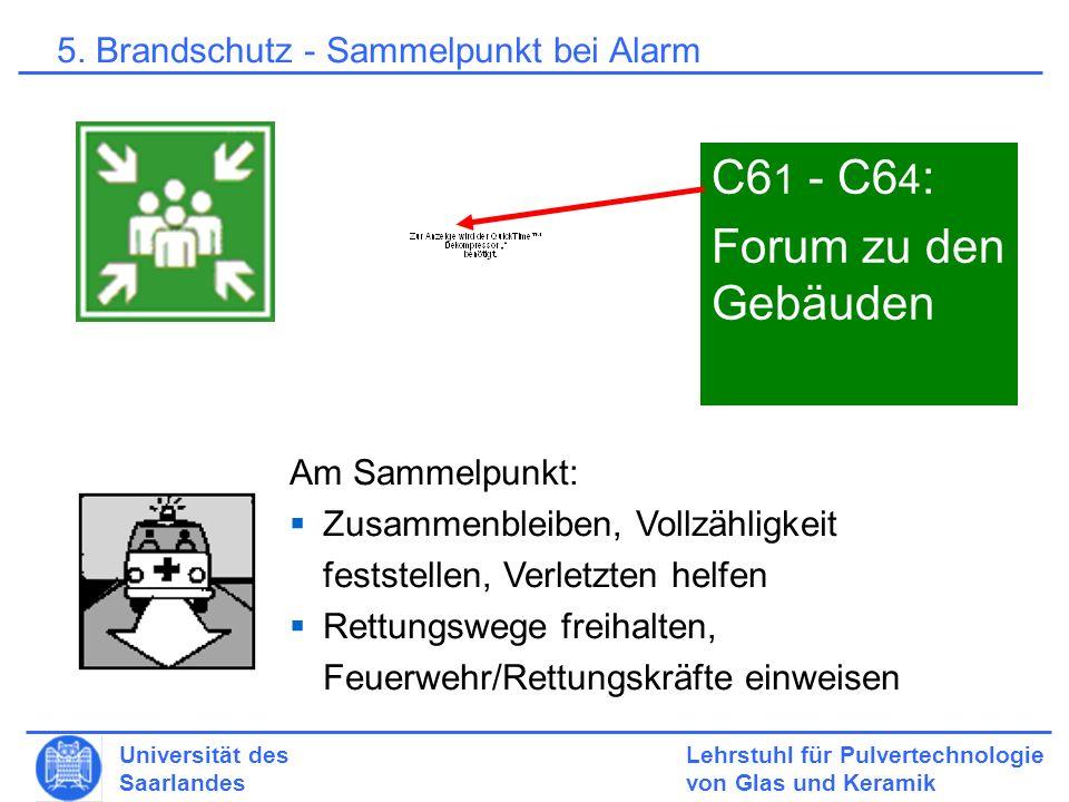 C61 - C64: Forum zu den Gebäuden
