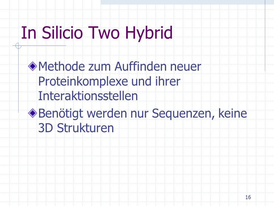 In Silicio Two Hybrid Methode zum Auffinden neuer Proteinkomplexe und ihrer Interaktionsstellen.