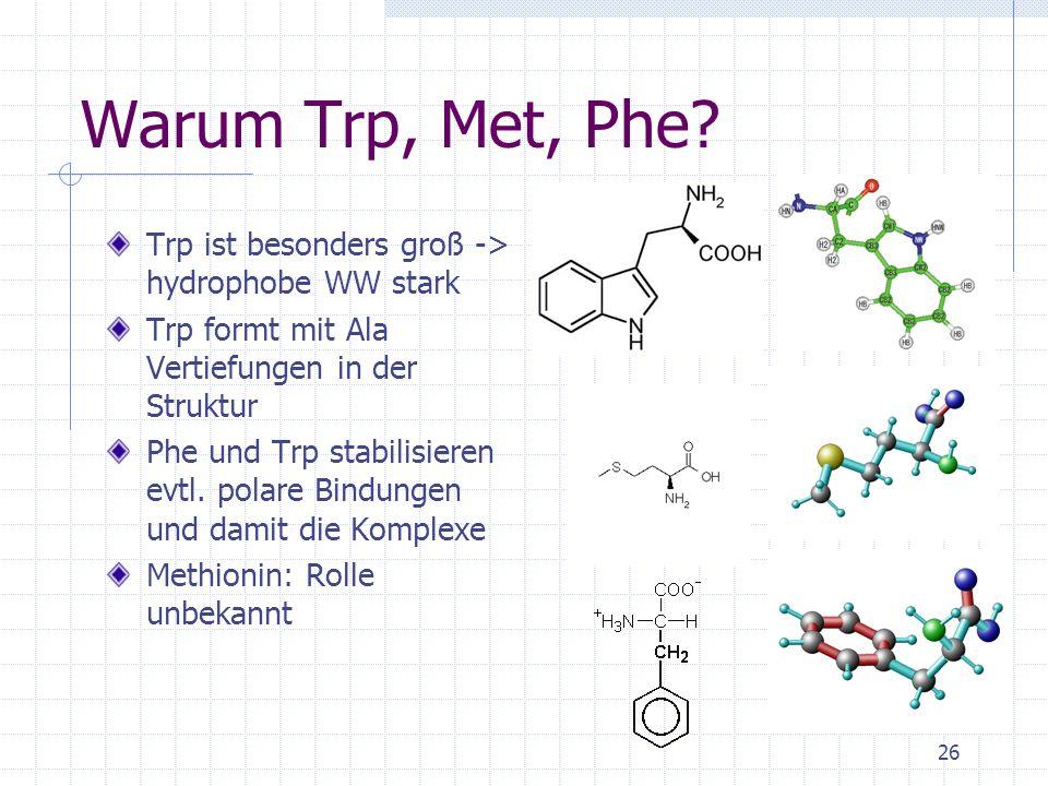 Warum Trp, Met, Phe Trp ist besonders groß -> hydrophobe WW stark