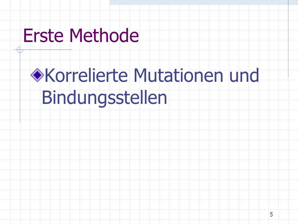 Erste Methode Korrelierte Mutationen und Bindungsstellen