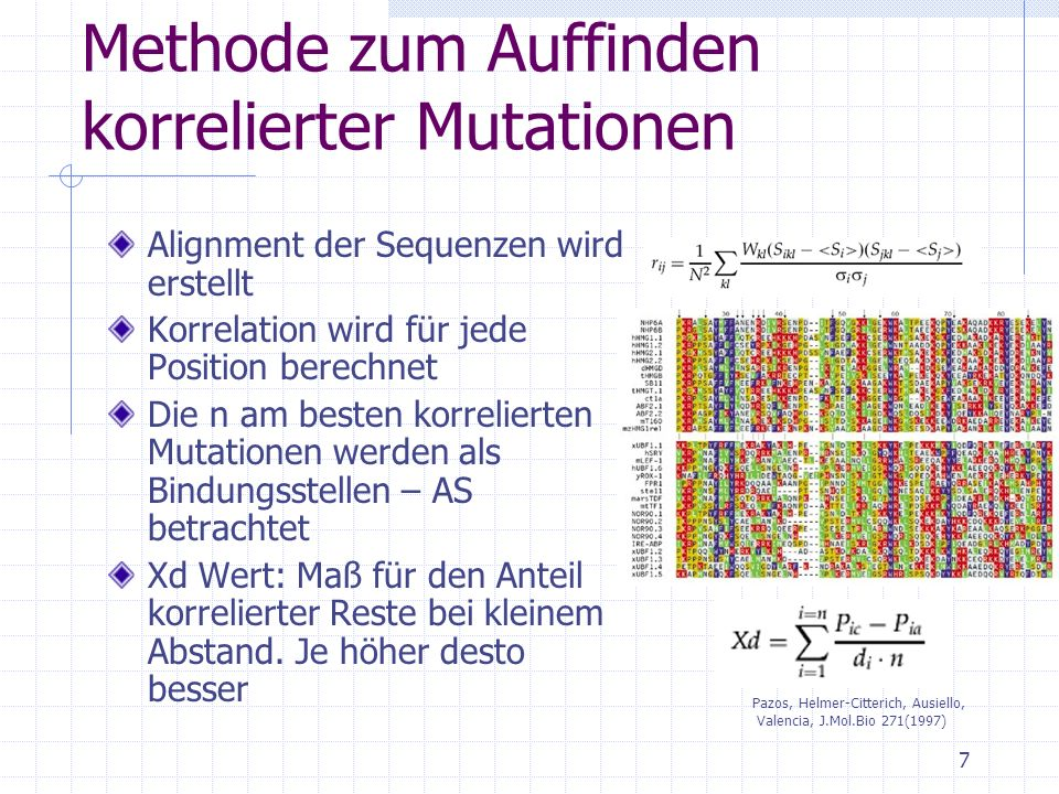 Methode zum Auffinden korrelierter Mutationen