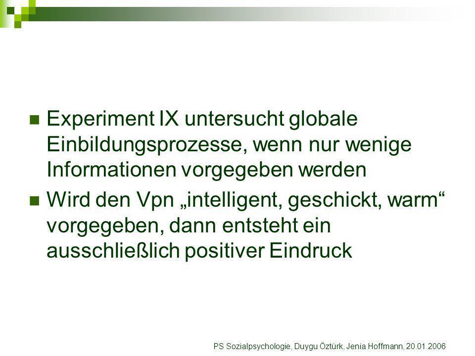 Experiment IX untersucht globale Einbildungsprozesse, wenn nur wenige Informationen vorgegeben werden