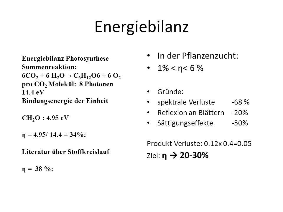 Energiebilanz In der Pflanzenzucht: 1% < η< 6 % Gründe: