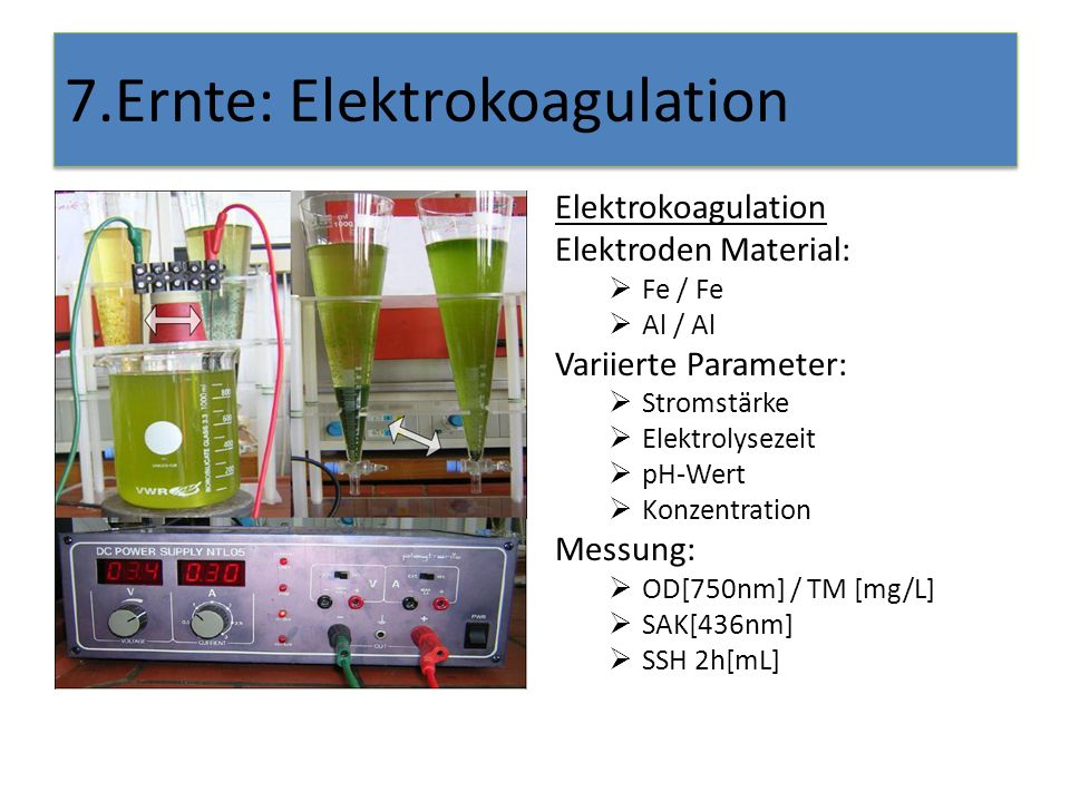 7.Ernte: Elektrokoagulation