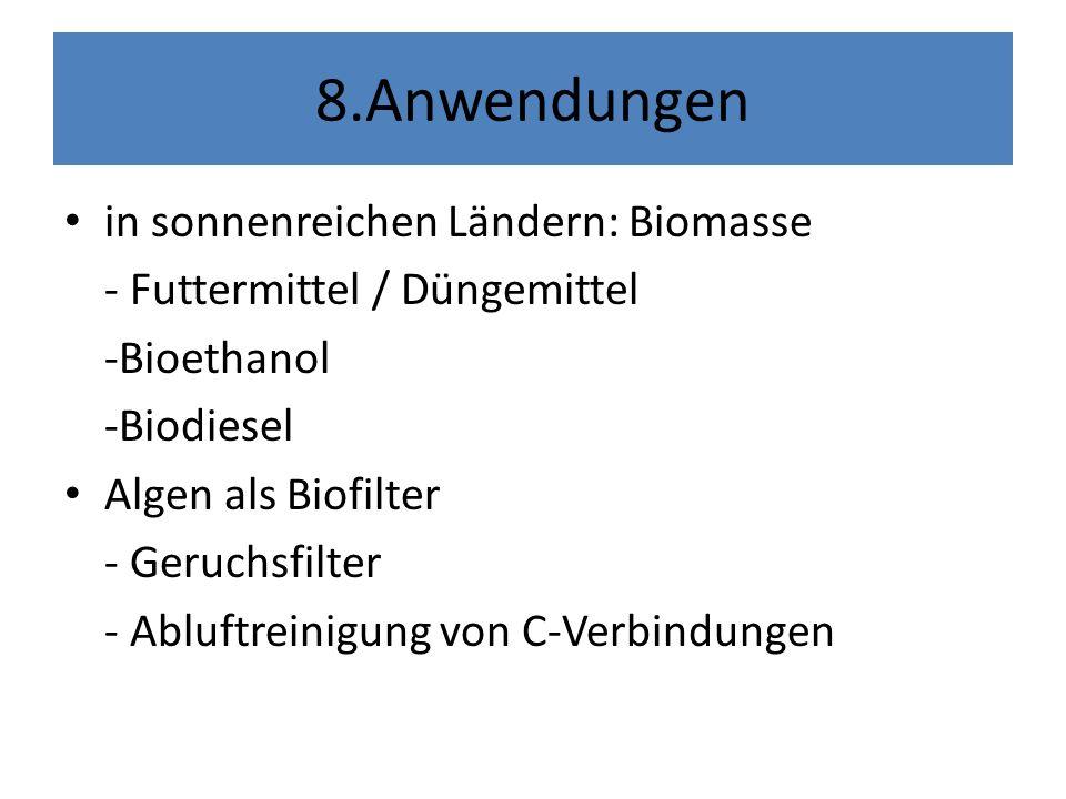 8.Anwendungen in sonnenreichen Ländern: Biomasse