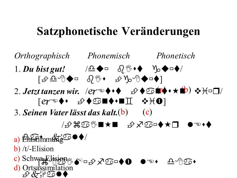 Satzphonetische Veränderungen