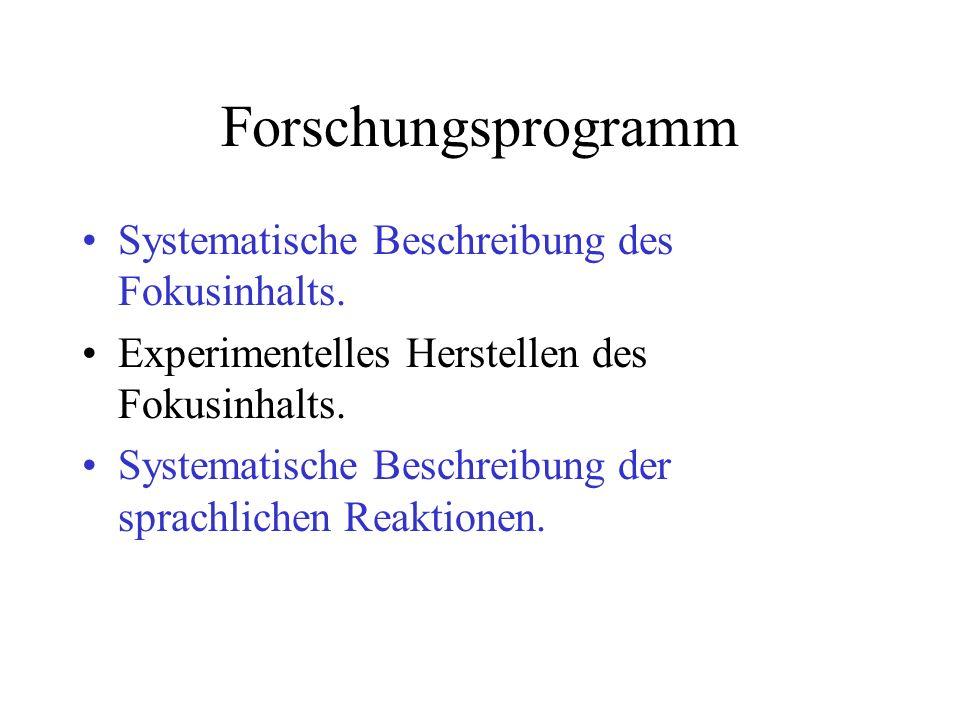 Forschungsprogramm Systematische Beschreibung des Fokusinhalts.
