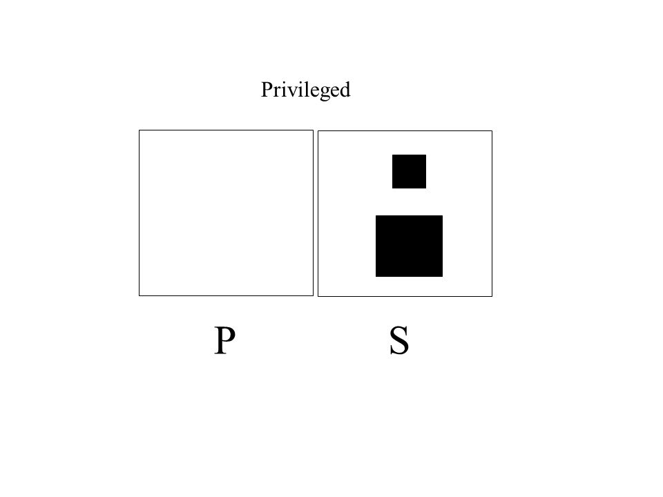 Privileged P S