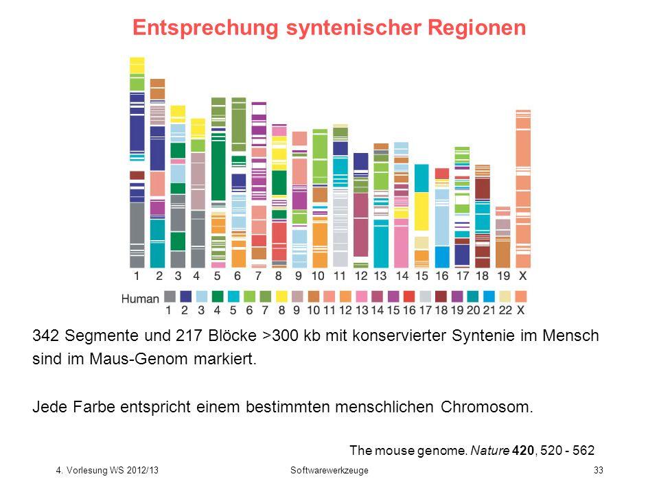 Entsprechung syntenischer Regionen
