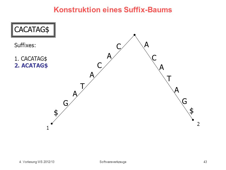 Konstruktion eines Suffix-Baums