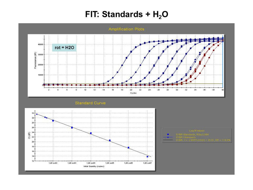 FIT: Standards + H2O rot = H2O