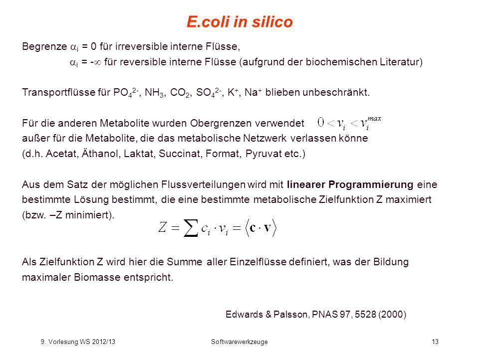 E.coli in silico Begrenze i = 0 für irreversible interne Flüsse,