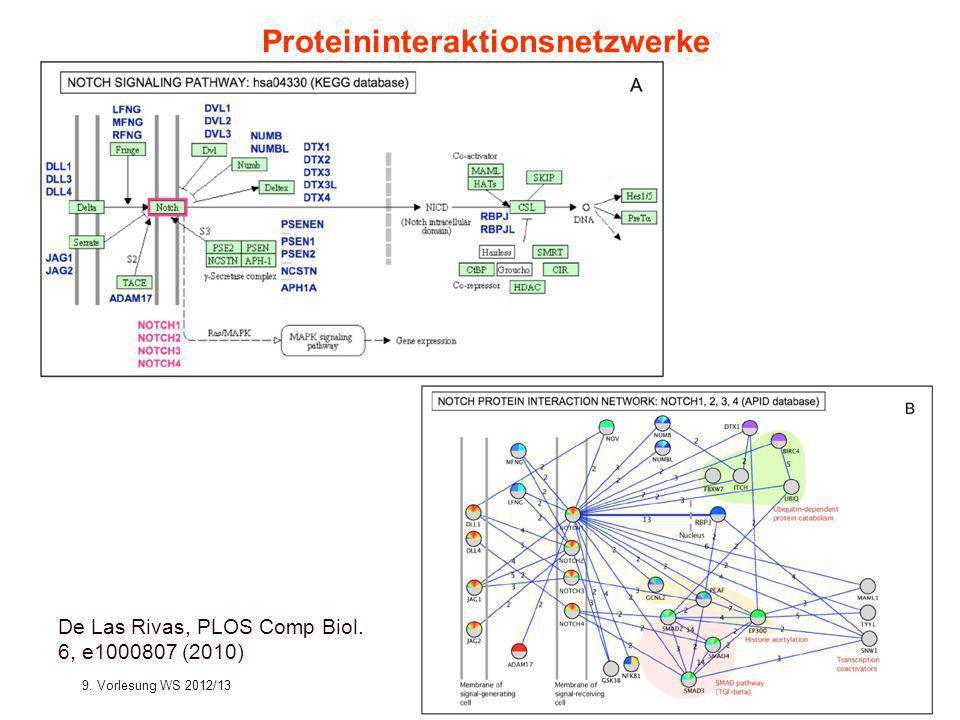 Proteininteraktionsnetzwerke