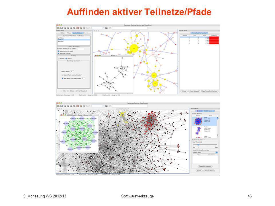 Auffinden aktiver Teilnetze/Pfade