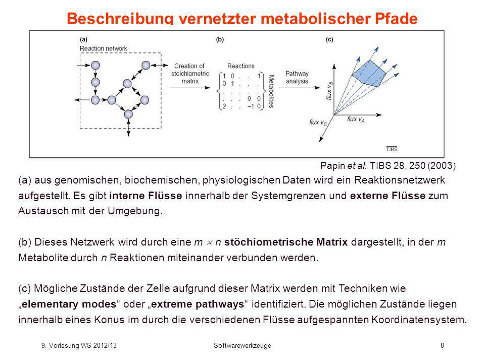 Beschreibung vernetzter metabolischer Pfade