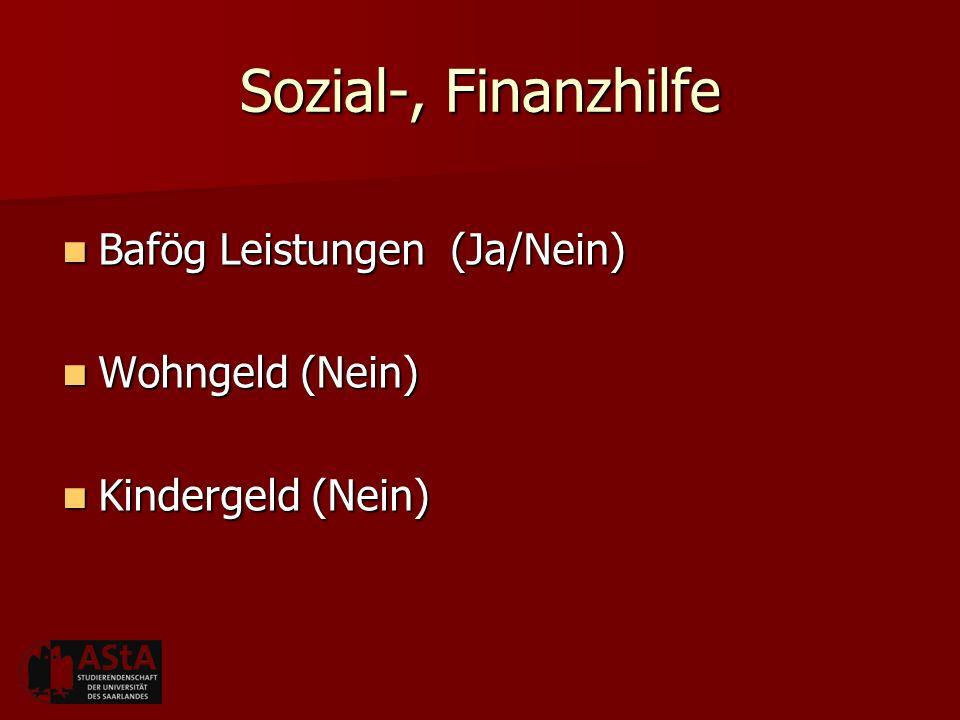 Sozial-, Finanzhilfe Bafög Leistungen (Ja/Nein) Wohngeld (Nein)