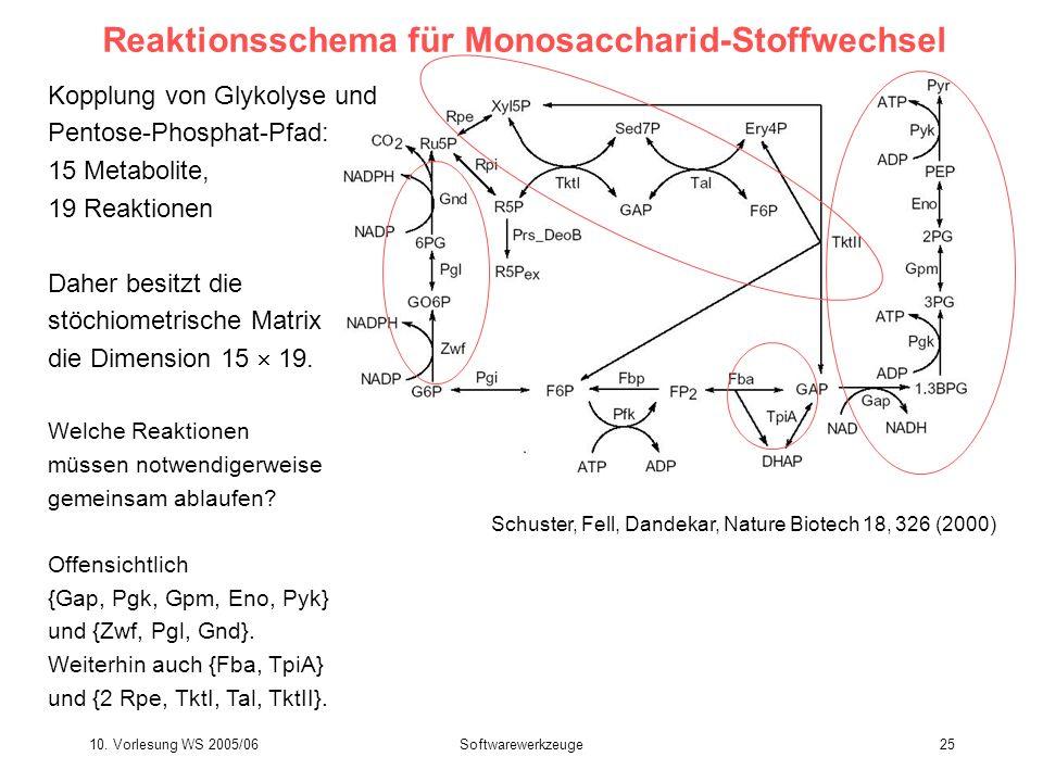 Reaktionsschema für Monosaccharid-Stoffwechsel