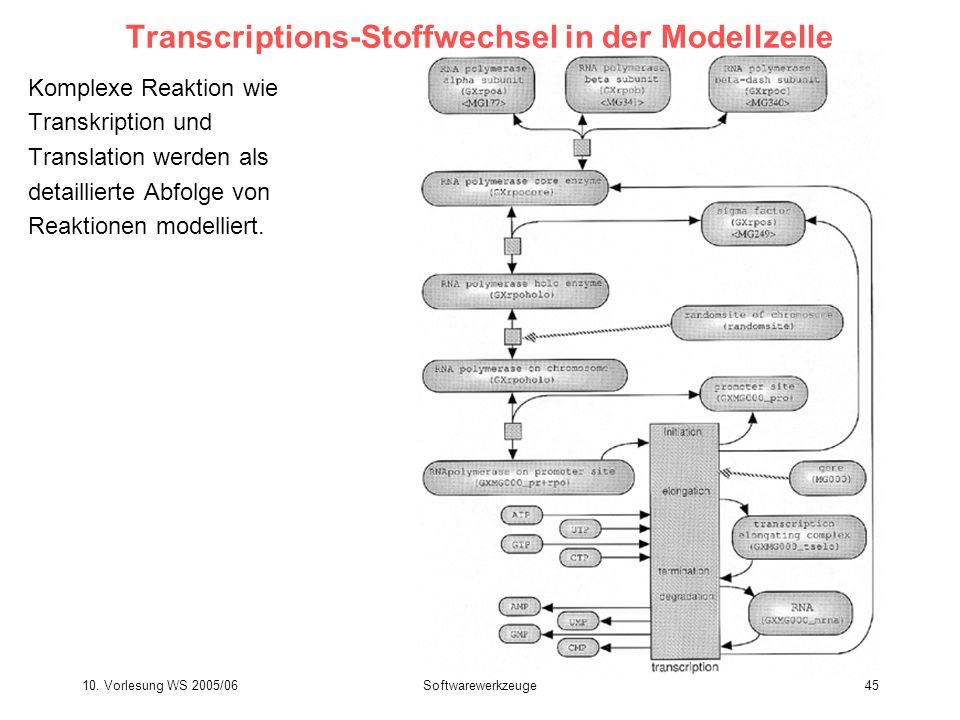 Transcriptions-Stoffwechsel in der Modellzelle