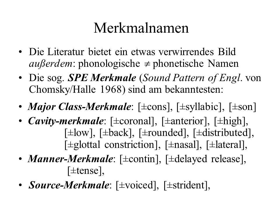 Merkmalnamen Die Literatur bietet ein etwas verwirrendes Bild außerdem: phonologische  phonetische Namen.
