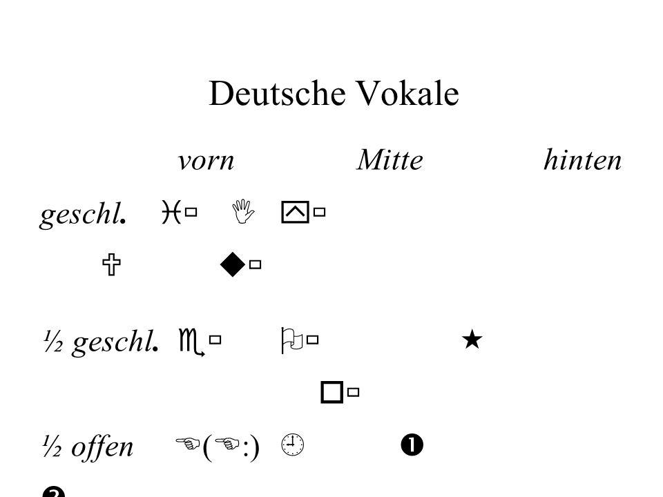 Deutsche Vokale vorn Mitte hinten geschl. i I y U u