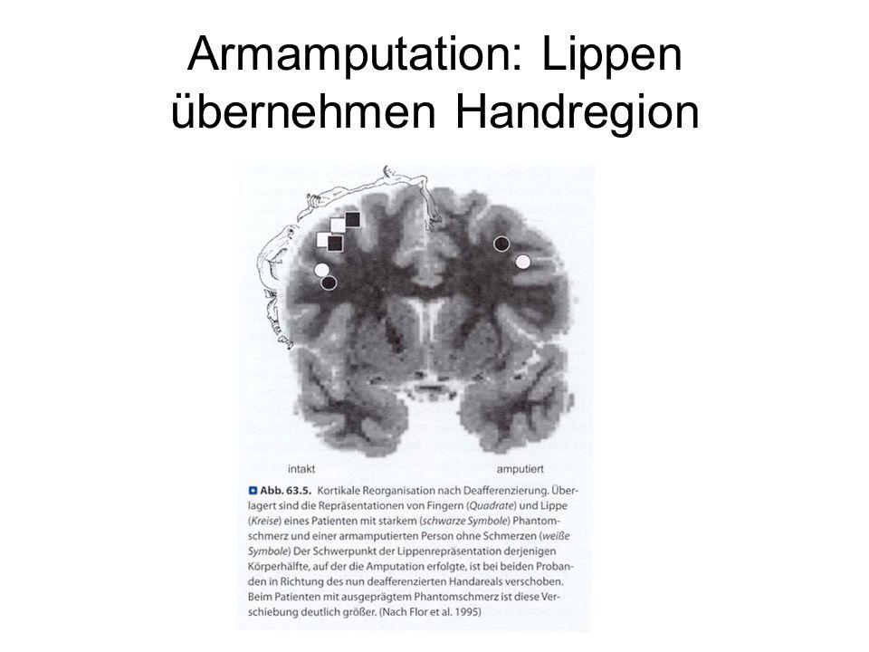 Armamputation: Lippen übernehmen Handregion