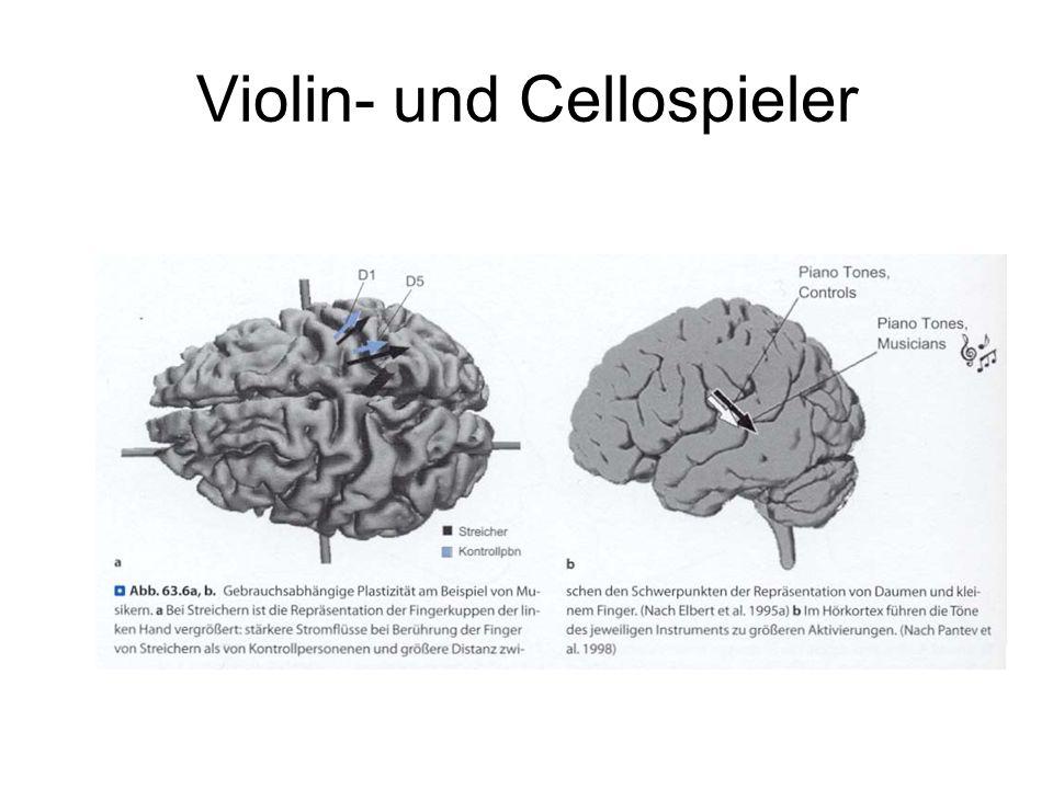 Violin- und Cellospieler