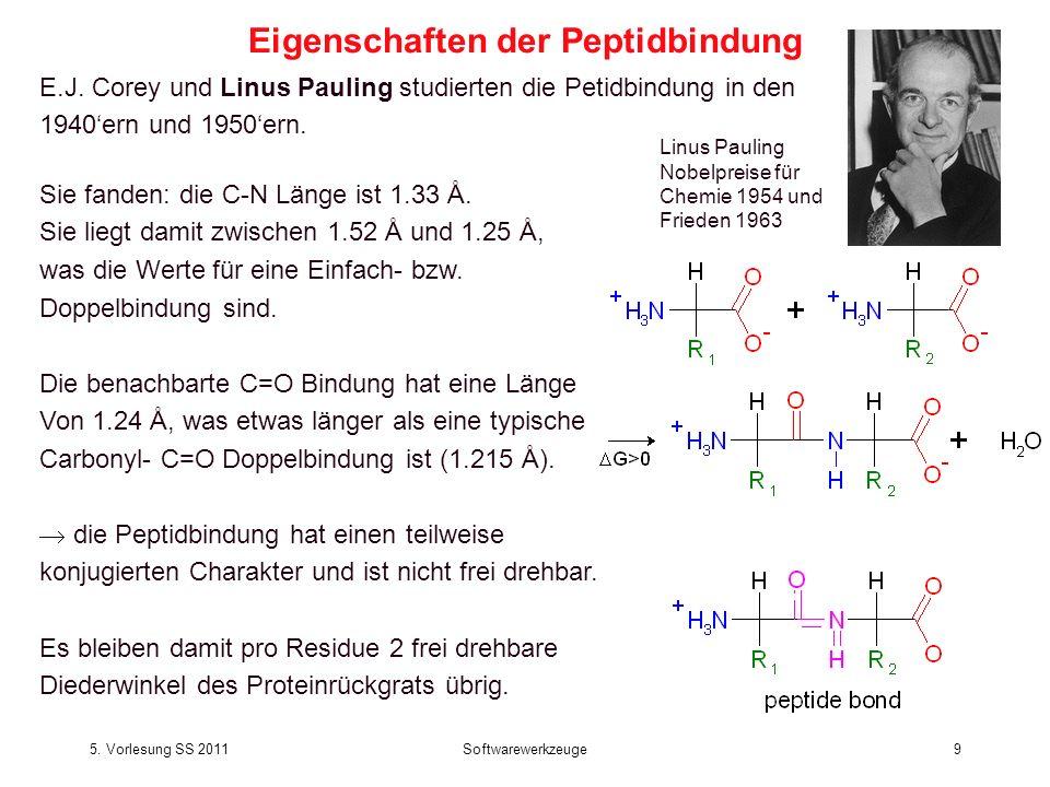 Eigenschaften der Peptidbindung