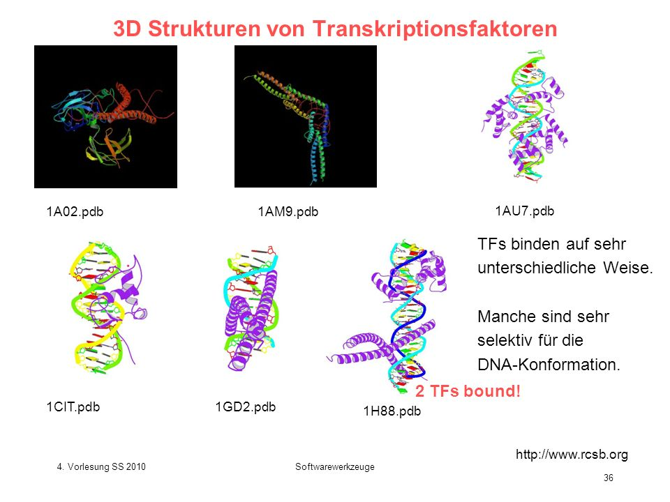 3D Strukturen von Transkriptionsfaktoren