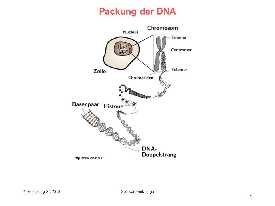 Packung der DNA 4. Vorlesung SS 2010 Softwarewerkzeuge