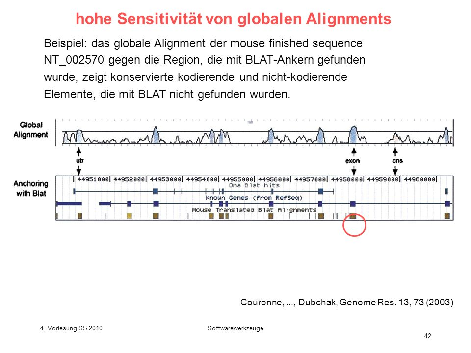 hohe Sensitivität von globalen Alignments