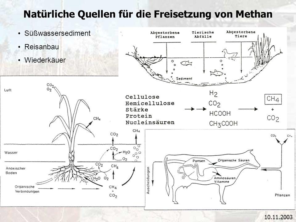 Natürliche Quellen für die Freisetzung von Methan