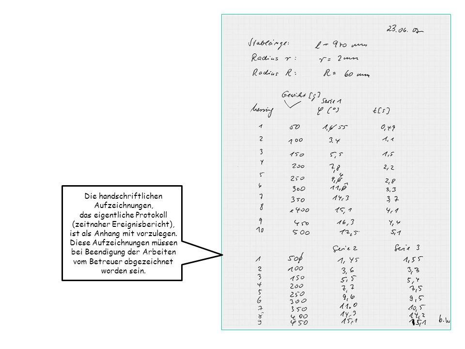 Die handschriftlichen Aufzeichnungen, das eigentliche Protokoll
