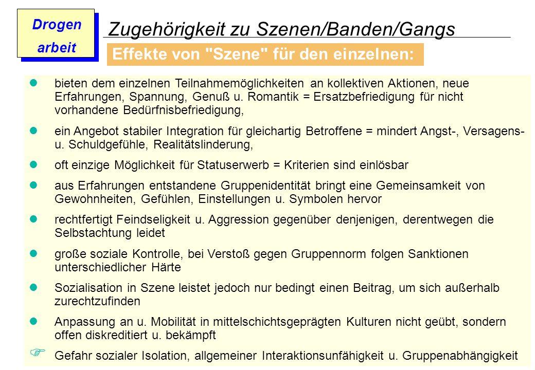 Zugehörigkeit zu Szenen/Banden/Gangs