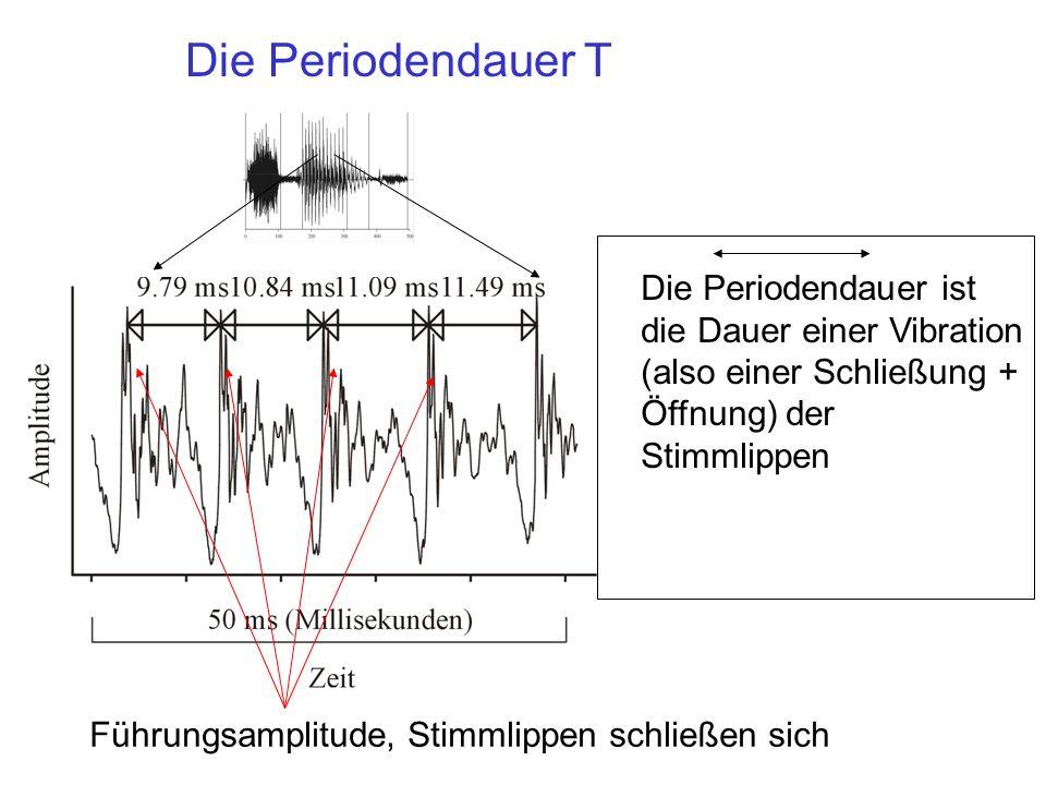 Die Periodendauer T Die Periodendauer ist die Dauer einer Vibration (also einer Schließung + Öffnung) der Stimmlippen.