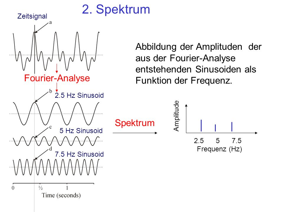 2. Spektrum Zeitsignal. Abbildung der Amplituden der aus der Fourier-Analyse entstehenden Sinusoiden als Funktion der Frequenz.