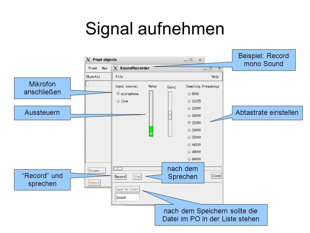 Signal aufnehmen Beispiel: Record mono Sound Mikrofon anschließen