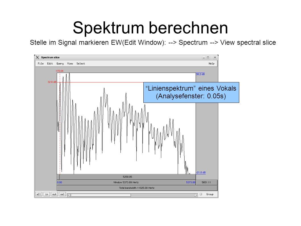 Linienspektrum eines Vokals