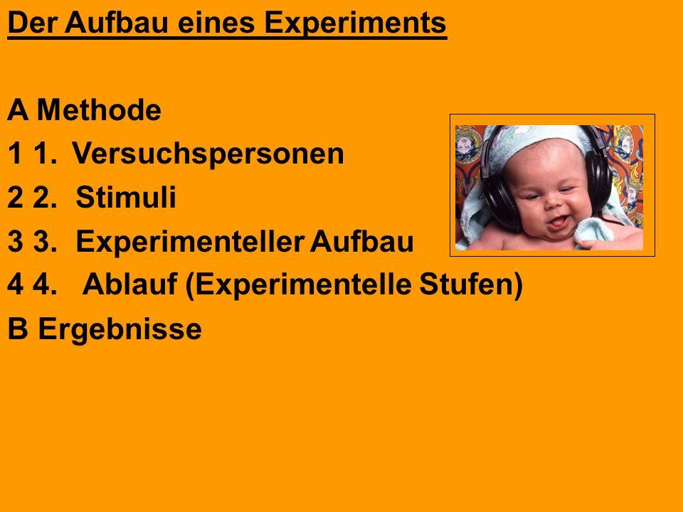 Der Aufbau eines Experiments