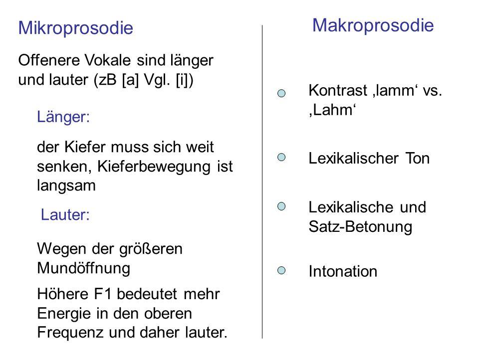 Makroprosodie Mikroprosodie