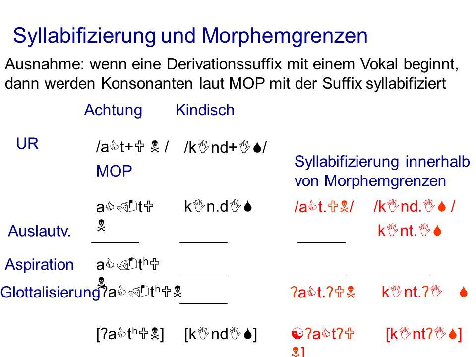 Syllabifizierung und Morphemgrenzen